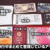 パスポートや航空券は百均のビニールポーチに入れておくとイザという時に便利